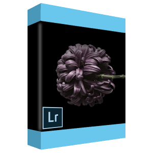Photoshop Lightroom logo
