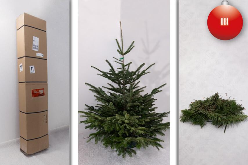 der gro e weihnachtsbaum vergleich. Black Bedroom Furniture Sets. Home Design Ideas