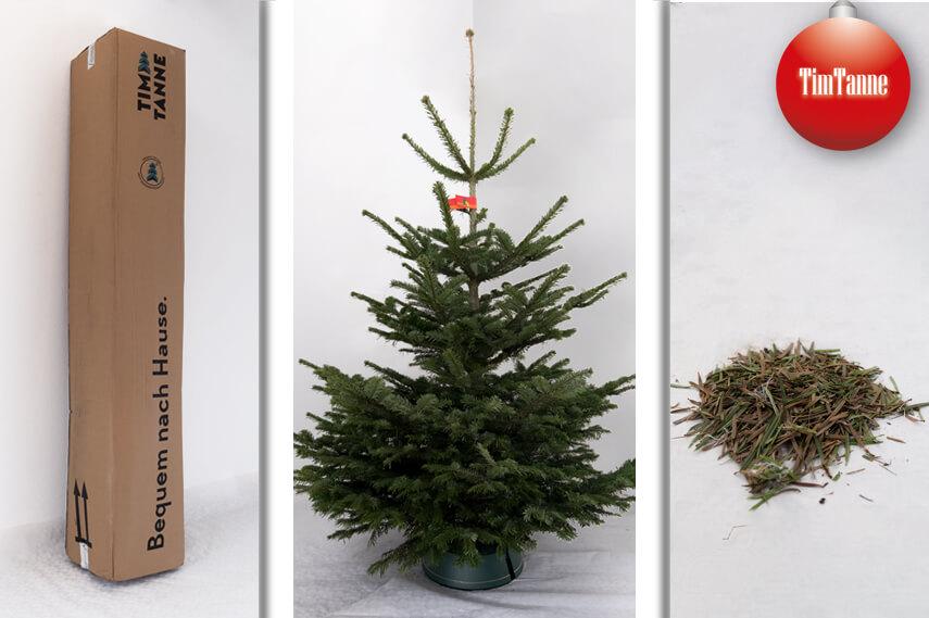 Weihnachtsbaum online kaufen aus dem sauerland