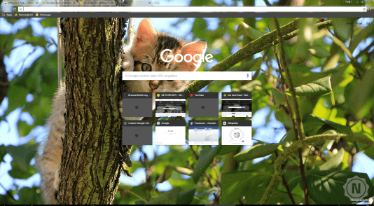 Chrome Theme Kitten in a Tree